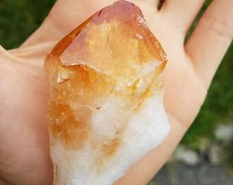 Large Deep Orange Citrine Crystal Point- super golden glow, beautiful sparkle- gemstone goddess raw mineral abundance // CP6