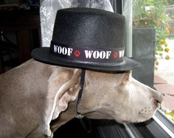 GentlePaw Top Hat for Dogs