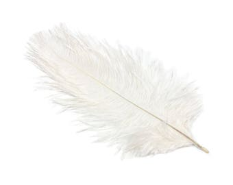 "10 Pieces White Ostrich Feather Plumes 12"" - 14"" Long - 10 Colors Available"