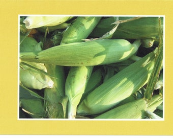 Corn at the Farmer's Market - photo card