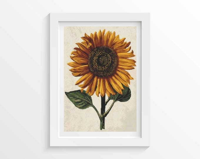Cross Stitch Kit, Embroidery Kit, Art Cross Stitch, Floral Cross Stitch, Sunflower with Background by Daniel Froesch (FROES03)