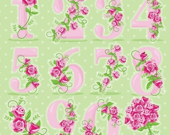 80% OFF SALE Floral numbers clipart, wedding clipart commercial use, Floral vector graphics, flowers clip art, digital images - CL959
