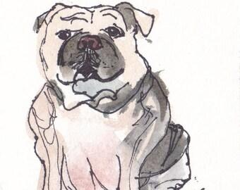 Original Watercolor Bulldog Painting