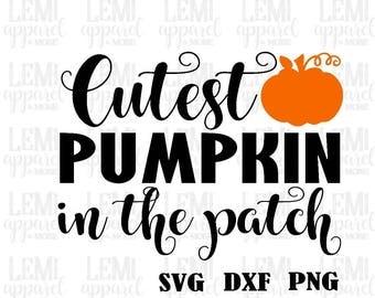 halloween svg-cutest pumpkin in the patch svg- halloween cut file-cutest pumpkin cut file-pumpkin design