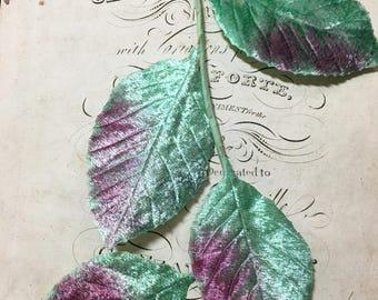 Wonderful velvet millinery leaves