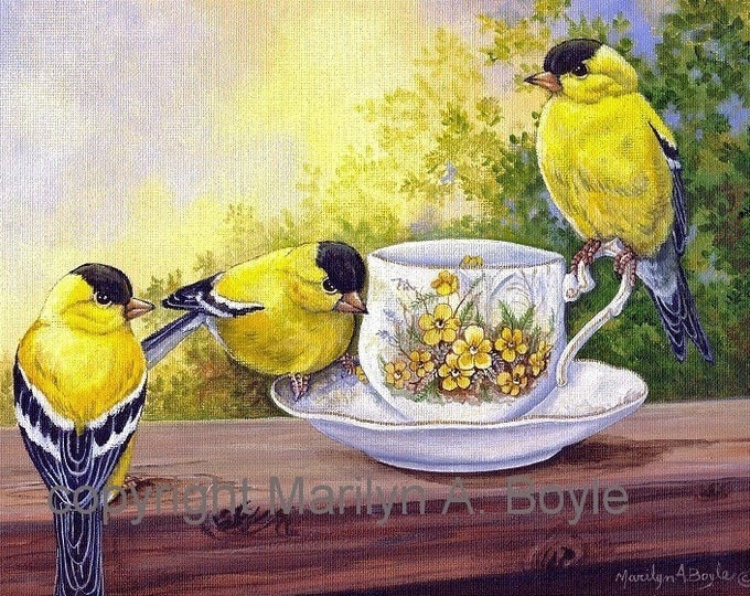 CARDS - SET of FOUR; The Teacup Series, blank cards, 4 x 5.5 inches with envelopes, garden birds, teacups, from original art,
