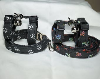 Ferret Paws Harness and Leash Set