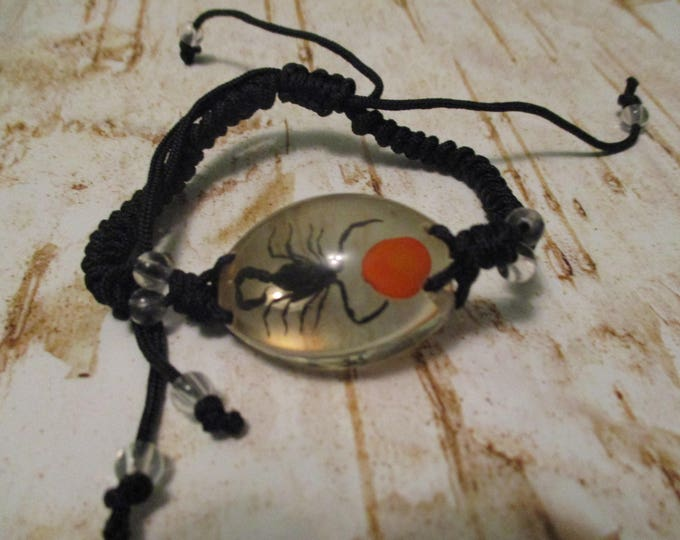 Scorpion in Clear Lucite Bracelet Wood Beads Slipknot Black or Yellow Scorpion 4 styles to choose from.