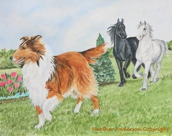 "8x10 Giclee print, Sable Collie, ""Follow Me Home"", Hand Drawn Collie Art, Dog Art, DOG LOVER GIFT, by Heather Anderson"