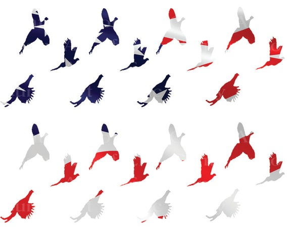 Patriotic Pheasant Hunting - Birthday Background - Designer Strips - Edible Cake Side Toppers- Decorate The Sides of Your Cake! - D22632