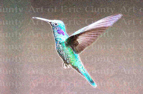Hummingbird Birthday - Edible Cake and Cupcake Topper For Birthday's and Parties! - D22760