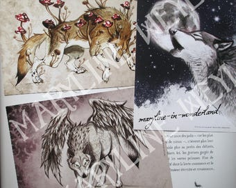"Set of 3 postcards ""on the trail of werewolves"""