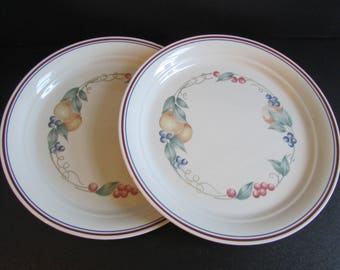 Abundance Corelle Corning Dinner Plate Set Of Two