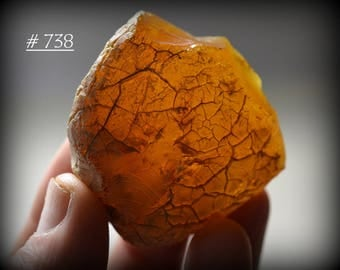 Unpolished, Authentic, Natural, Clear Vintage Copal (Young Amber) Specimen with Great Surface Texture and Terrific Color