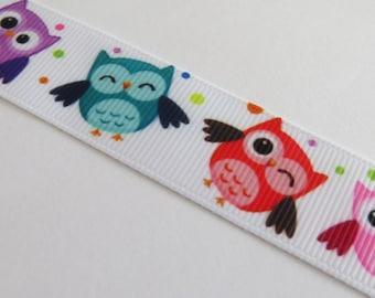 Pretty colorful OWL on White Ribbon
