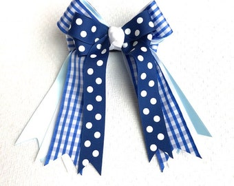Bows 4 Shows/beautiful blue gingham/equestrian clothing