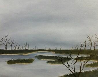 Delta Marsh - Oil On Paper