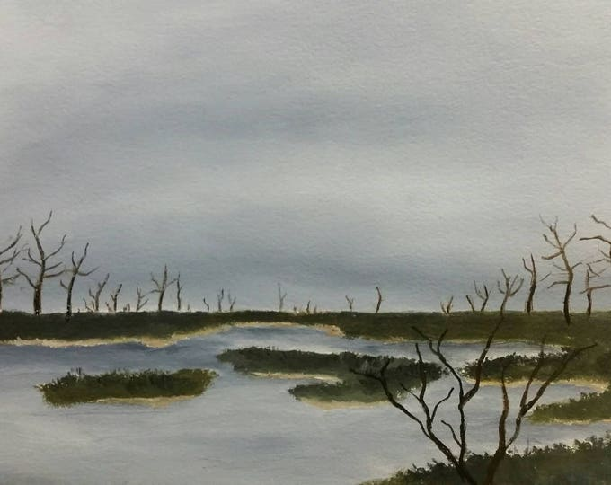 Delta Marsh - Oil On Paper
