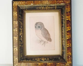 Owl Print in an Very Old Frame / Faux Wood and Faux Marble / Albrecht Durer Vintage Print / Natural Element