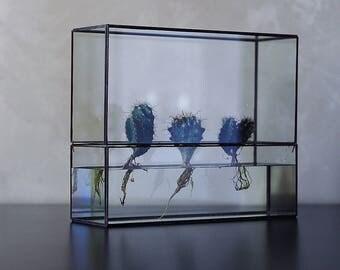 "Hydroponic terrarium ""HydroTerra"" XL"