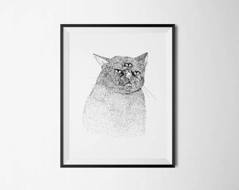 Print - the three eyed cat