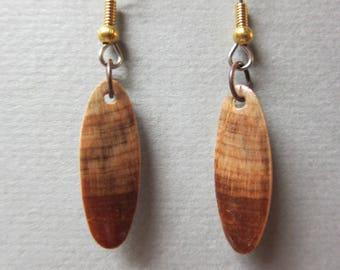 Small Exotic Wood Earrings Norfolk Island Pine repurposed ecofriendly Handcrafted ExoticWoodJewelryAnd