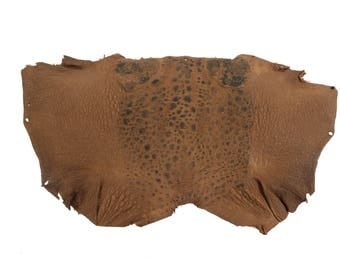 Cane Toad Skin Leather: Brown (1018-10-BR)
