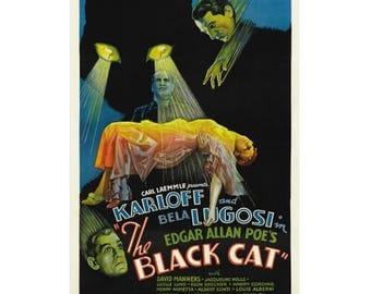 Black Cat Horror Movie Poster - Karloff Lugosi Vintage 1934 Classic Terror Film Print Size 18 x 24 inch