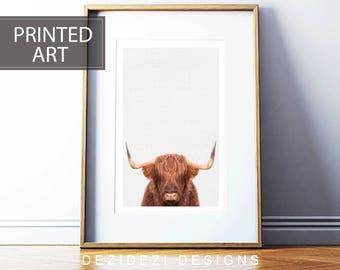 Highland Cow Print, prints for sale,framed art art prints for sale, framed prints, wall art canvas giclee, giclee prints, canvas art prints