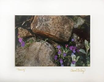 "Tenacity Analog Film Photograph 5x7"" Fine Art Print plus Mat"