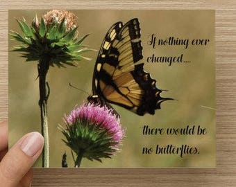 Butterfly Photo/Notecard/10pk