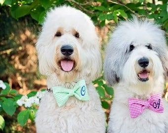 Green Monogrammed Gingham Dog Bow Tie