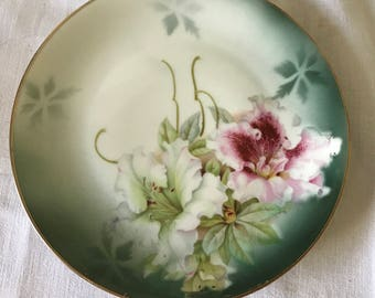Georgous Hand Painted Pink Floral Plate P.V. Vessra Germany Farmhouse Collectible Shabby Chic Cottage Wedding Bridal Shower Fine china