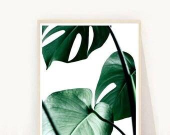 Monstera, Tropical Leaf Print, Printable Art, Monstera Leaf, Botanical Art, Instant Download,  Wall Art, Home Decor, Wall Decor