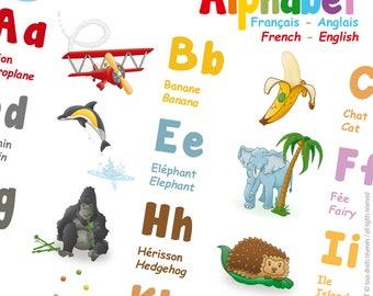 Abécédaire - Affiche ALPHABET Poster Bilingue - Français Anglais - Ecole Education Décoration Illustration Chambre Enfant