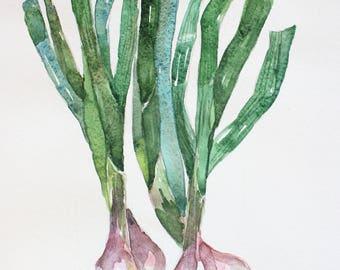 Original Watercolor, Green Onions, Organic Vegetables, Kitchen decor art, Botanical Home decor, Onion Art, Onions decorations wall OOAK