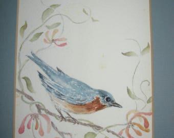 Vintage Original Pastel or Gouache FramedPainting of an Eastern Bluebird by Nancy Kroske (1985) LOVELY!