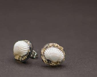 Taste of Hawaii Earrings   Oahu's Beach Shells & Sand   Seashells   Surgical Steel   Shrink Film   Petite, Beautiful