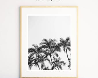 Palm Print, Black and White Prints, Tropical Decor, Palm Tree Print, Beach Decor, Black and White Wall Art, Wall Art Decor,