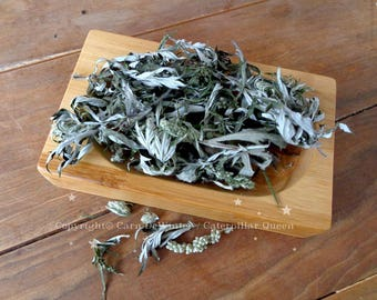 Mugwort Hand-picked, hand-dried - Ingredients for spells and ritual, incense, ceremony and invocation -The witches herb