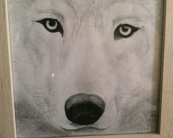 Wolf - Original framed drawing