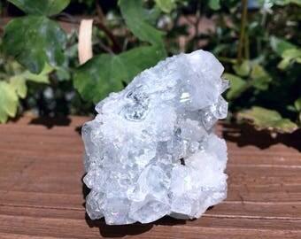 Apophyllite Crystal Cluster