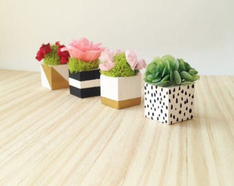 1:12 Scale Miniature Dollhouse Assorted Square Flower and Moss Planters