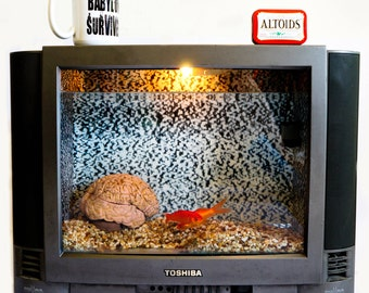 recycled art, television fish tank, gold fish, mind control, vintage television, aquarium, home decor, brain wash, office furniture, news