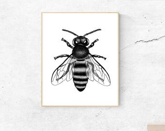 Bee, instant download, wall art, printable art, poster, minimal print, neutral, sketched art