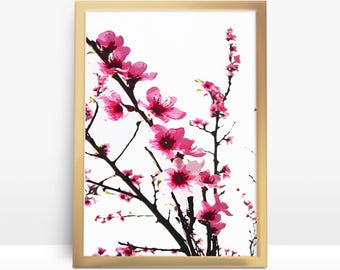 Cherry Blossoms Wall Decal Wall Sticker Tree Decals Dk006