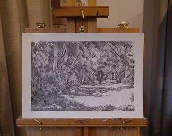 Original Pencil Drawing, Surrey Woodland 35x25cm