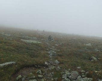 Alpine Garden Fog - Mount Washington