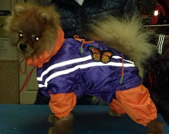 The jumpsuit for dogs for walks