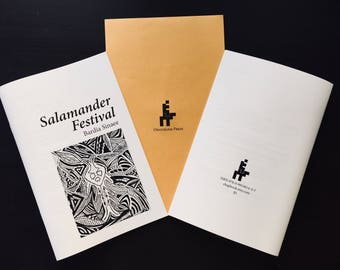 Salamander Festival by Bardia Sinaee